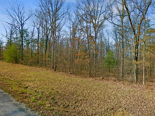 .83 Acres In Crossville, TN : Crossville : Cumberland County : Tennessee