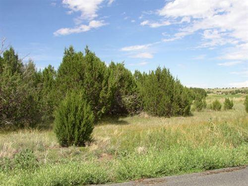 1.05 Acres In Saint Johns, AZ : Saint Johns : Apache County : Arizona