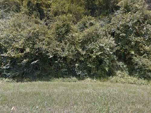 2.56 Acres- Poplarville, Ms 39470 : Poplarville : Pearl River County : Mississippi