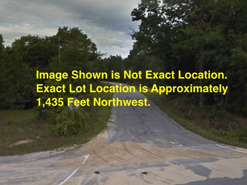 2.64 Acres- Cheraw, Sc 29520 : Cheraw : Chesterfield County : South Carolina