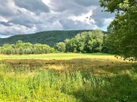 9 Acres Of Land With Creek : Orangeville : Columbia County : Pennsylvania