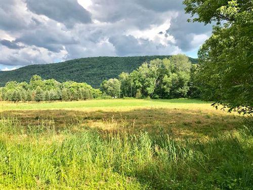 9 Acres Of Land With Creek : Orangeville : Columbia County : Pennsylvania