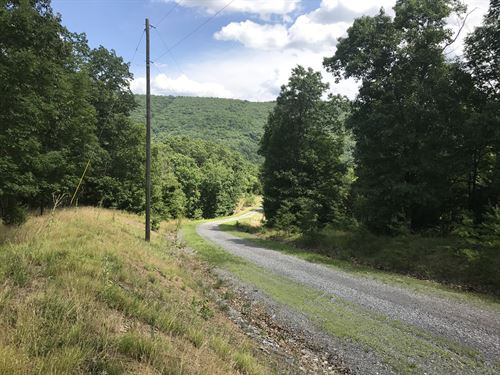 Wooded Mountain Property : Romney : Hampshire County : West Virginia