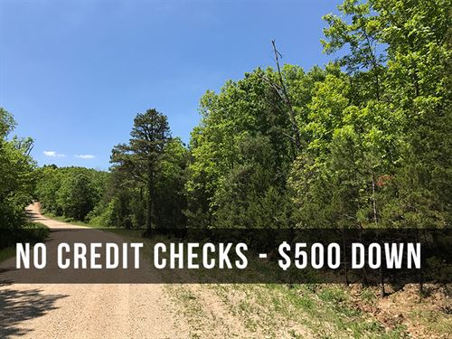 7 Acres Near National Forest : Birch Tree : Shannon County : Missouri