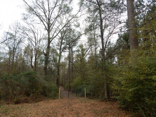 5.769 Acres : Tylertown : Walthall County : Mississippi