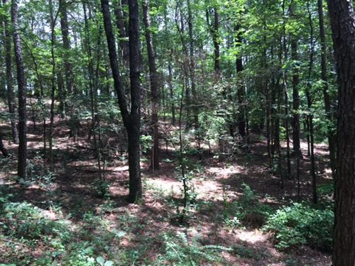 5.296 +/- Wooded Acres, Gordon Co : Ranger : Gordon County : Georgia