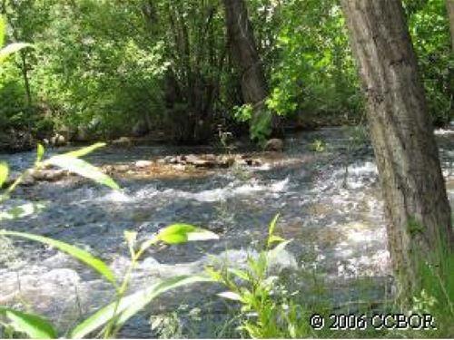 2693845, Beautifully Treed : Salida : Chaffee County : Colorado