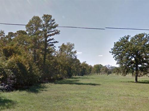 Trinity County, Tx $14,999 Neg : Trinity : Texas