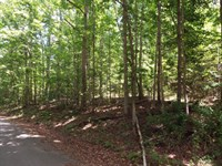 Beautiful Cumberland Cove 5.1 Acres : Monterey : Cumberland County : Tennessee