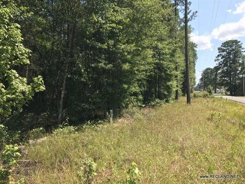 19.78 Ac - Timberland For Potential : Harrell : Calhoun County : Arkansas