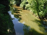 18.88 Ac Of Great Country Land : Lafayette : Macon County : Tennessee