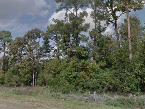Trinity County, Tx $70,000 Neg : Trinity : Texas