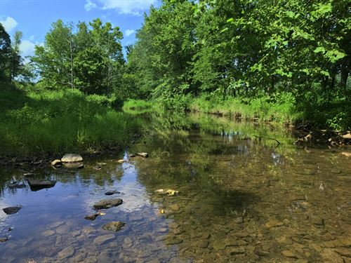 17 Acres On Brownlow Creek : Lynnville : Giles County : Tennessee