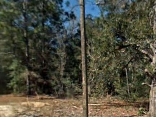 Citrus County, Fl $10,000 Neg : Inverness : Citrus County : Florida