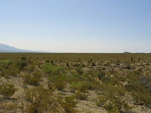 Desert Mountain Views Lot : Ft Hancock : Hudspeth County : Texas
