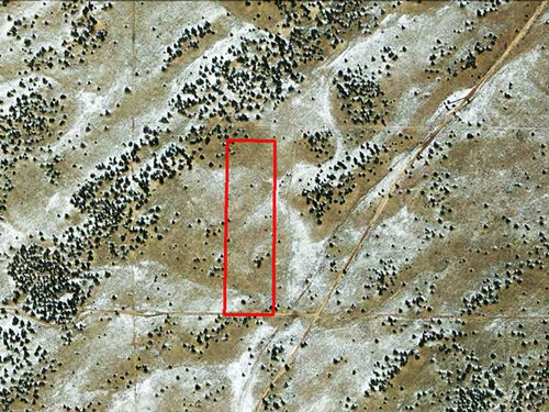 Large Lot Of Open Land Zoned Ag : Sanders : Apache County : Arizona