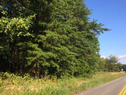 Wooded With Road Frontage : Pamplin : Prince Edward County : Virginia