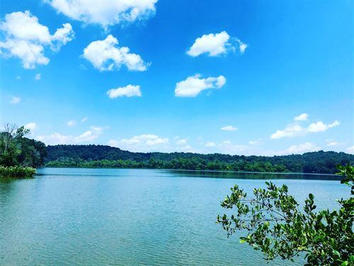 Lakefront Estate With Boat Slip : Loudon : Tennessee