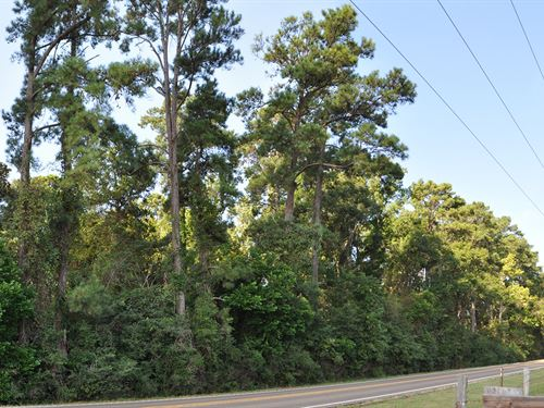 8.6 Acres Fm 1725 : Cleveland : Liberty County : Texas