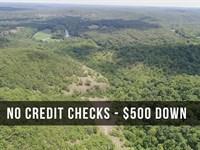 12 Acres Near Niangua River : Lebanon : Dallas County : Missouri