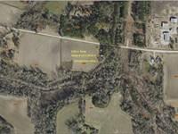 Mini-Farm With Duck Pond : Chadbourn : Columbus County : North Carolina