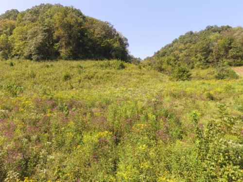 15.76 Ac S Fork Road, Whitleyvi : Whitleyville : Jackson County : Tennessee