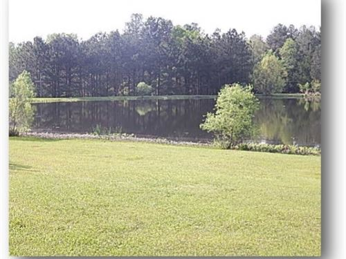 20 Acres In Madison County : Madison : Mississippi