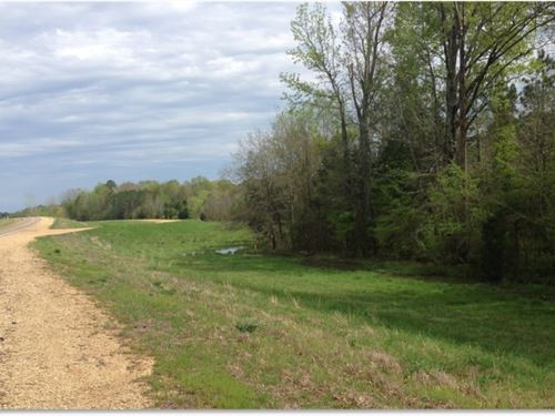 2 Acres In Monroe County : Amory : Monroe County : Mississippi