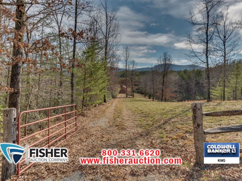 Online Real Estate Auction : Mill Spring : Polk County : North Carolina