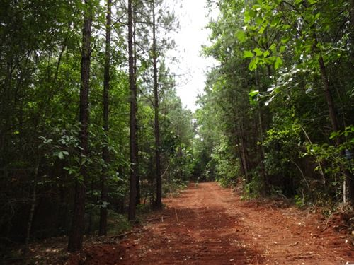 18.77 Acres Winding Creek Road : Norris : Pickens County : South Carolina