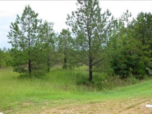 5.8 Acres In Lowndes County : Columbus : Lowndes County : Mississippi