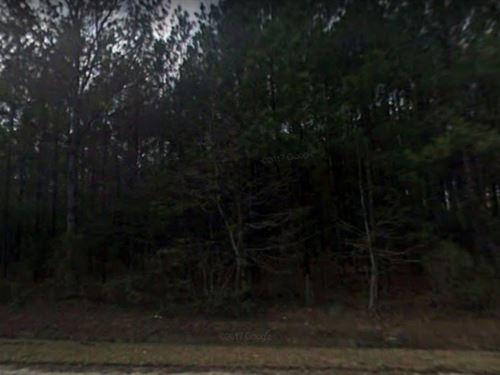 1 Acres In Georgetown, SC : Georgetown : South Carolina