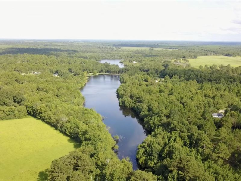 Waterfront Lot On Catfish Lake : Lumberton : Pearl River County : Mississippi