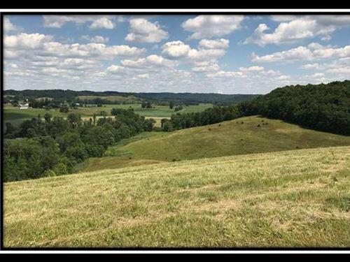 Tract 7 On Sherman Lake : Vinton : Gallia County : Ohio