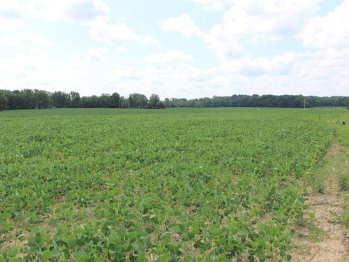Sr 301 - 10 Acres : Wellington : Lorain County : Ohio