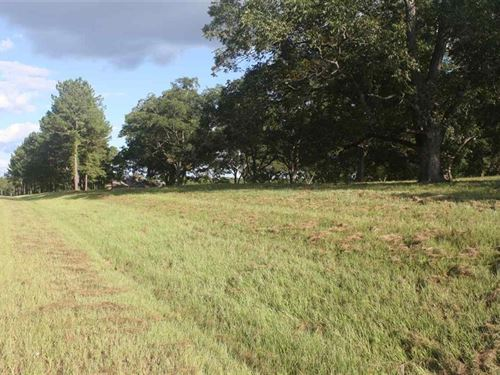 Beautiful Home Site On 8 Acres : Perry : Peach County : Georgia