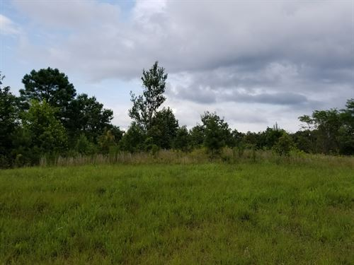 5.93+/-Acres Bring Your Horses : South Pittsburg : Marion County : Tennessee