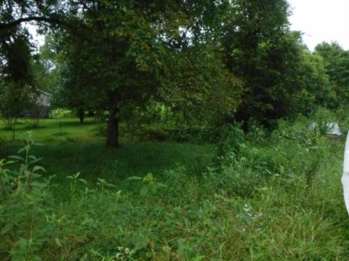 8.33 Ac, Creek, Mtn Views, Wildlife : Pleasant Shade : Smith County : Tennessee