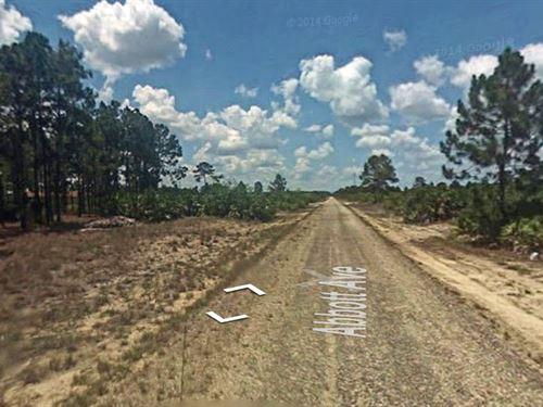 .33 Acres In Lehigh Acres, FL : Lehigh Acres : Lee County : Florida