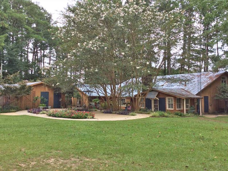 Bush Hwy 29 House And 10 Acres : Brantley : Crenshaw County : Alabama