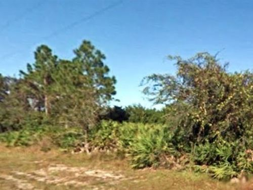 Hendry County, Fl $40,000 Neg : Labelle : Hendry County : Florida