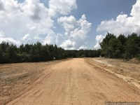 12.3+/- Ac Lot In New Subdivision : Brookhaven : Lincoln County : Mississippi