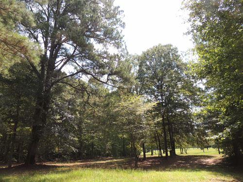 10.4 Ac On Whispering Pines Trail : Senoia : Coweta County : Georgia