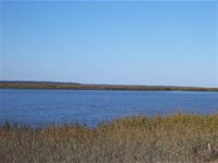 Barbour Island Marsh Front : Townsend : McIntosh County : Georgia