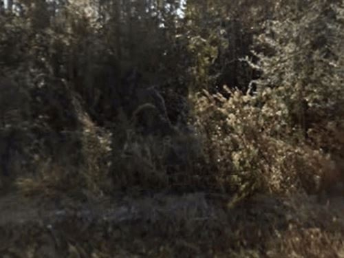1.82 Acres- Moss Point, Ms 39562 : Moss Point : Jackson County : Mississippi