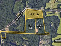 10.1+/- Ac Of Land On Jim Jones : Tuscaloosa : Tuscaloosa County : Alabama