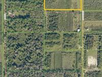 Black Hammock Agricultural Area : Oviedo : Seminole County : Florida
