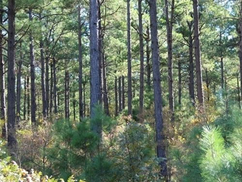 1.08 Acres- Hot Springs, Ar 71909 : Hot Springs Village : Garland County : Arkansas