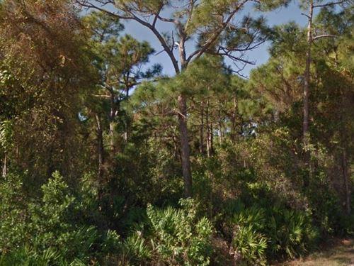 Lee County, Fl $50,000 Neg : Bokeelia : Lee County : Florida