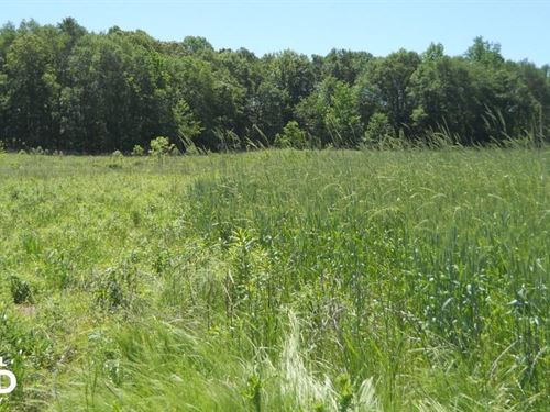 Residential Homesite On Private Woo : Pelzer : Greenville County : South Carolina